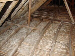 woodworm treatment in old buildings