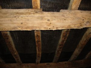 woodworm treatment references