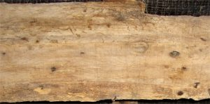 Woodworm treatment in timber